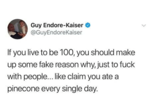 Pinecone: Guy Endore-Kaiser  @GuyEndoreKaiser  If you live to be 100, you should make  up some fake reason why, just to fuck  with people... like claim you ate a  pinecone every single day. Pinecone