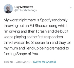 Concerns: Guy Matthews  @trotsrabbledogs  My worst nightmare is Spotify randomly  throwing out an Ed Sheeran song whilst  I'm driving and then I crash and die but it  keeps playing so the first responders  think I was an Ed Sheeran fan and they tell  my mum and Iend up being cremated to  fucking Shape of You.  1:40 am 23/08/2019 Twitter for Android Concerns