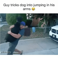Funny, Dog, and Img: Guy tricks dog into jumping in his  arms  gifb in.com 'Oh hey you know what this isn't so bad'- Dog (Via-img-iBleeedorange)   More 👉 @miinute