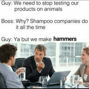 Hammers by kvader007 FOLLOW HERE 4 MORE MEMES.: Guy: We need to stop testing our  Boss: Why? Shampoo companies do  Guy: Ya but we make hammers  products on animals  it all the time Hammers by kvader007 FOLLOW HERE 4 MORE MEMES.