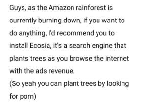 meirl: Guys, as the Amazon rainforest is  currently burning down, if you want to  do anything, I'd recommend you to  install Ecosia, it's a search engine that  plants trees as you browse the internet  with the ads revenue.  (So yeah you can plant trees by looking  for porn) meirl