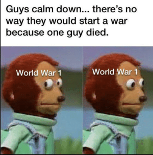 *Nervous laughter* ha ha ha…: Guys calm down... there's no  way they would start a war  because one guy died.  World War 1  World War 1 *Nervous laughter* ha ha ha…