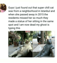 Chill, Ghost, and Heroes: Guys I just found out that super chill cat  was from a neighborhood in Istanbul and  when she passed away in 2015 the  residents missed her so much they  made a statue of her sitting in the same  spot and l am now dead my ghost is  typing this Honouring heroes via /r/wholesomememes https://ift.tt/2OIWEQd
