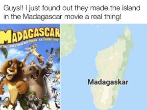 That's just insane isn't it?: Guys!! I just found out they made the island  in the Madagascar movie a real thing!  IT DEZELFDE STUDIO ALS SHREK EN SHARK TALE  Madagaskar That's just insane isn't it?