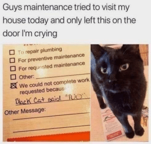 """Crying, My House, and Work: Guys maintenance tried to visit my  house today and only left this on the  door I'm crying  To repair plumbing  For preventive maintenance  For requested maintenance  Other:  We could not complete work  requested because  Dack Cat eaidl """"O  Other Message:  saintns"""