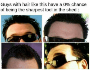 Hair, Tool, and Chance: Guys with hair like this have a 0% chance  of being the sharpest tool in the shed smashmouth that like button