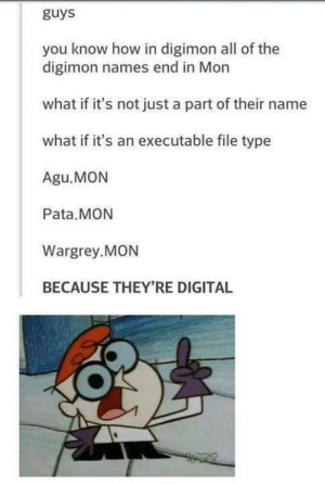 Windows, Digimon, and All of The: guys  you know how in digimon all of the  digimon names end in Mon  what if it's not just a part of their name  what if it's an executable file type  Agu.MON  Pata.MON  Wargrey.MON  BECAUSE THEY'RE DIGITAL Yet another file type Windows Media Player can't read