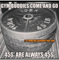 Gym, They, and You: GYM  BUDDIES COME AND GO  @GYMMEMESANDMOTIVATION They are always There for you 💪😂 . @livingfittips 🔥🔥