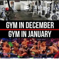 I'm really feeling the workout memes rn so here comes a bunch 😁: GYM IN DECEMBER  GYM IN JANUARY I'm really feeling the workout memes rn so here comes a bunch 😁