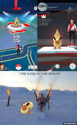 9gag, Gym, and Minnesota: Gym level 2  12  2000/4000  FLAREON  Cp 832  THE KING IN THE NORTH  VIA 9GAG.COM Just claimed the only gym in the middle of nowheresville, Minnesota. I TAKE ALL COMERS!