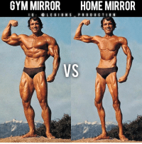 Clothes, Facebook, and Gym: GYM MIRROR  HOME MIRROR  I G  (a LE GION S  PRODUC T I O N  VS 😳😂🤣GYM MIRROR VS HOME MIRROR! Founder 👉: @king_khieu. Can you relate lol? True or false? Thoughts? 🤔Opinions? What do you guys think? COMMENT BELOW! Athlete: @schwarzenegger. TAG SOMEONE who needs to lift! _________________ Looking for unique gym clothes? Use our 10% discount code: LEGIONS10🔑 on Ape Athletics 🦍 fitness apparel! The link is in our 👆 bio! _________________ Principal 🔥 account: @fitness_legions. Facebook ✅ page: Legions Production. @legions_production🏆🏆🏆