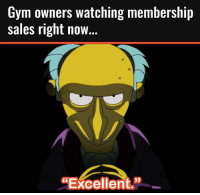 "Excellent: Gym owners watching membership  sales right now.  ""Excellent."""