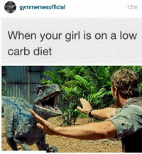 Calm Down, Calm, and You Need to Calm Down: gymmemesofficial  12m  When your girl is on a low  carb diet Babe you need to calm down.