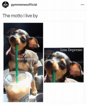 Live, Espresso, and Ore: gymmemesofficial  The motto I live by  Less Depresso  ore espresso This is actually the greatest.