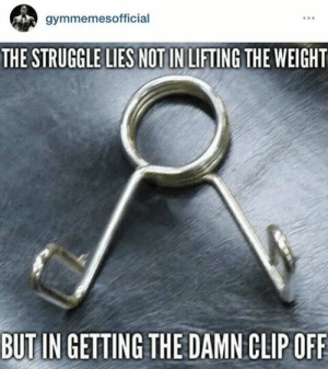 The struggle is real.: gymmemesofficial  THE STRUGGLE LIES NOT IN LIFTING THE WEIGHT  BUTIN GETTING THE DAMN CLIPOFF The struggle is real.