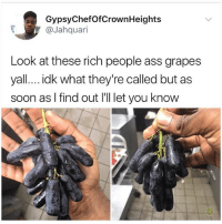Ass, Instagram, and Memes: GypsyChefOfCrownHeights  @Jahquari  Look at these rich people ass grapes  yall... .idk what they're called but as  soon as I find out I'll let you know You always see @kalesalad posts because it's the best account on instagram. It's time u finally follow.