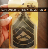 "Blessed, Friends, and Memes: GYSGT  SEPTEMBER 1ST IS MY PROMOTION  Insignia of the Corps"" @ssgt_allen_is_ Very blessed to have gotten selected for the rank of Gunnery Sergeant (GySgt) ... now I'm just counting down to the day... 🔥Follow @usveteranfeeds ❎ DOUBLE TAP pic 🚹 TAG your friends 🆘 DM your Pics-Vids 📡 Check My IG Stories 💥Check the link in Bio 👉@usveteranfeeds - usarmy armylife usnavyseal navylife militarylife militarylove usmilitaryacademy navylife usmilitary usarmyveteran veterans supportthetroops supportourveterans usnavy USMC USCG usmarines armedforces semperfi usairforcepride usairforce hooah Oorah armystrong infantry activeduty supportourtroops usarmedforces"