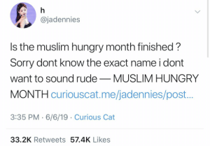Just Roundhouse Kicked Another Pregnant Muslim in the Stomach Thank