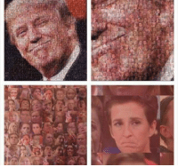 Someone made a mosaic of Trump using liberals crying haha 😂😂: [H Someone made a mosaic of Trump using liberals crying haha 😂😂