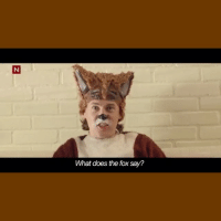 What Does The Fox Say? Episode 1. (Tag your friends) thefox: What does the fox say? What Does The Fox Say? Episode 1. (Tag your friends) thefox