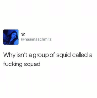 Fucking, Funny, and Squad: @haannaschmitz  Why isn't a group of squid called a  fucking squad