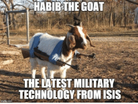 Isis, Goat, and Technology: HABIB THE GOAT  THELATEST MILITARY  TECHNOLOGY FROM ISIS  img flip-com