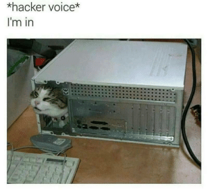 Memes, Computer, and Voice: *hacker voice*  I'm in Computer memes