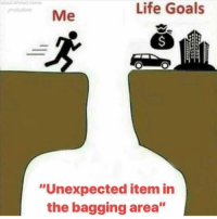 "Goals, Life, and Memes: had Ahmedmeme  produdtions  Life Goals  Me  ""Unexpected item in  the bagging area"" Ahhhh I relate"