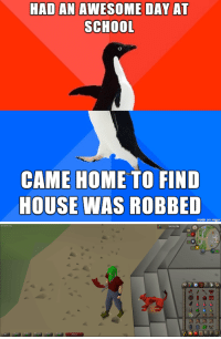 Had a good day at school. Came home to discover we got robbed. It's nice to laugh despite the terrible circumstances.: HAD AN AWESOME DAY AT  SCHOOL  CAME HOME TO FIND  HOUSE WAS ROBBED  made on imgur   Inventory  Repor  9,455,204  XP Had a good day at school. Came home to discover we got robbed. It's nice to laugh despite the terrible circumstances.