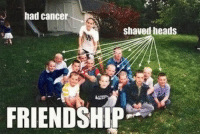 Memes, 🤖, and Shaved Head: had cancer  shaved heads  FRIENDSHIP http://t.co/FVXFOT6zlq