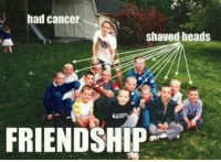 Memes, 🤖, and Shaved Head: had cancer  shaved heads  FRIENDSHIP You know these are friends for life