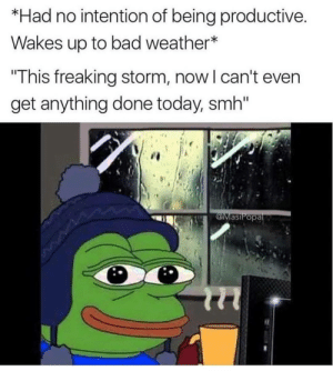 "Follow us @studentlifeproblems​: *Had no intention of being productive  Wakes up to bad weather*  This freaking storm, now l can't even  get anything done today, smh""  asiPopa Follow us @studentlifeproblems​"