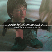 Daniel Radcliffe, Memes, and 🤖: haDanieleadoli4eewas requi  Daniel Radcliffe was required to  -shave his leg forthe-scene-where Harry  have revealshe's heiscerne-where·Harry  HELOSTPROrevears he's missing a sock.  THELOSTPROPHECY Comment '🌚' if you knew this and '😱' if you didn't