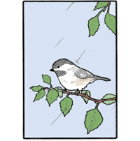 Haha falseknees comics chickadee webcomics throwback: Haha falseknees comics chickadee webcomics throwback