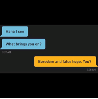 Grindr, Boredom, and Hope: Haha I see  What brings you on?  9:37 AM  Boredom and false hope. You?  9:38 AM That about sums it up 🤷🏼♂️ (@virtualboy__)