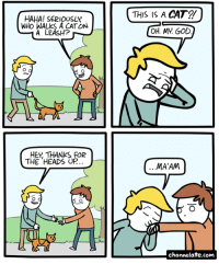 URL--->http://www.channelate.com/2015/04/06/cat-2/ Bonus Panel--->http://www.channelate.com/extra-panel/20150406/: HAHA! SERIOUSLY  WHO WALKS A CATON  A LEASH?  HET THANKS FOR  THE HEADS UP  OH. MY GOD  MA'AM  channelate.com URL--->http://www.channelate.com/2015/04/06/cat-2/ Bonus Panel--->http://www.channelate.com/extra-panel/20150406/