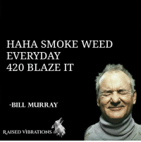 Inspirational quote from a great man. weed smoke 420 blazeit cannabiscommunity: HAHA SMOKE WEED  EVERYDAY  420 BLAZE IT  BILL MURRAY  RAISED VIBRATIONS Inspirational quote from a great man. weed smoke 420 blazeit cannabiscommunity