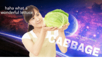 "Reddit, Haha, and Com: haha what a  wonderful lettuce  CABBAGE  releas me at once, mo  for I am  Ortal <p>[<a href=""https://www.reddit.com/r/surrealmemes/comments/7ljssh/cabbage/"">Src</a>]</p>"