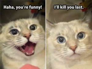 Funny, Life, and Haha: Haha, you're funny!  I kill you last. Life