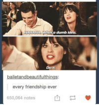 Dank, Dumb, and Friendship: HAHAHA What a dumb idea.  Do it.  balletandbeautifulthings:  every friendship ever  650,064 notes