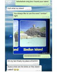 """Huh, Memes, and Omg: Hahahahah omg bro l found your island  5:41 PM  Huh what my island  5:42 PM  You always like to use the word """"similan''  right  5:42 PM  and Similan Island  5:43 PM  HAHAHAHAHAHA H  5:43 PM  Oh my tien finally my place of birth!!!  5:44 PM  Guess what are the birds on this island  called?  5:45 PM Hahaha omg who knows the name of the birds on this island?"""