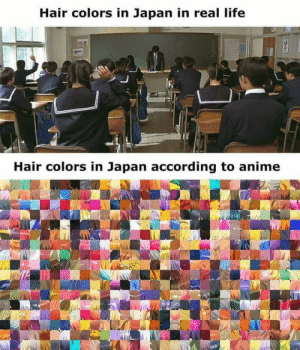 Anime, Dank, and Life: Hair colors in Japan in real life  Hair colors in Japan according to anime  ts It's just fantasy