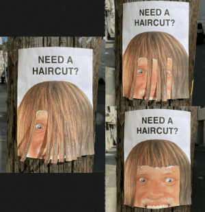 Haircut flyer: Haircut flyer