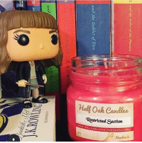 Books, Fire, and Memes: Hal&Oal,Candles  Restricted Section  ww. Efsy  y.com/shop/HaltOakCandieT  tbc Pboenix  0  and the Goblet of Fire  RO  ities?s001- Find bookish and Geeky candles @halfoakcandles Tag halfoakcandles to share Restricted Section! 8 oz candle. Scent: Cedar, dust, freesia, with a hint of peony. @halfoakcandles 📍Tag a friend who will like this candle. 📸 @bookish.mel books bookgeek bookgasm booknerd readmore intalike igbooks instabook lovereading bookshelf booklover booknerdigans bibliophile igreads intagood huffpostgram totalbooknerd