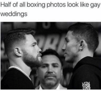 Boxing, Funny, and Lol: Half of all boxing photos look like gay  weddings True lol