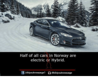 Cars, Memes, and Norway: Half of all cars in Norway are  electric or Hybrid.  idyouknowpagel