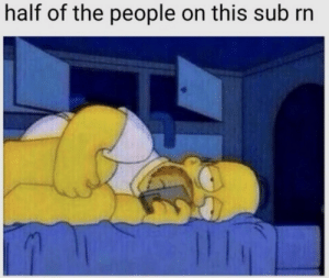 Go to sleep: half of the people on this sub rn Go to sleep