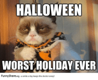 quickmeme: HALLOWEEN  WORST HOLIDAY EVER  quickmeme com  Funny Share.org a smile a day keeps the doctor away!