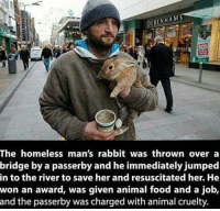 Memes, Rabbit, and Animal Cruelty: HAM  ENH  The homeless man's rabbit was thrown over a  bridge by a passerby and he immediately jumped  in to the river to save her and resuscitated her. He  won an award, was given animal food and a job,  and the passerby was charged with animal cruelty We need more people like him ❤