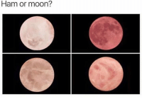 mooning: Ham or moon?